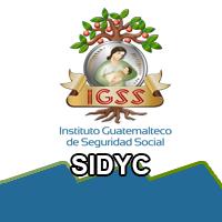 Sistema Integrado de Cajas y Delegaciones (SIDYC)