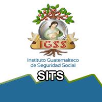 Sistema Integrado de Trabajo Social (SITS)